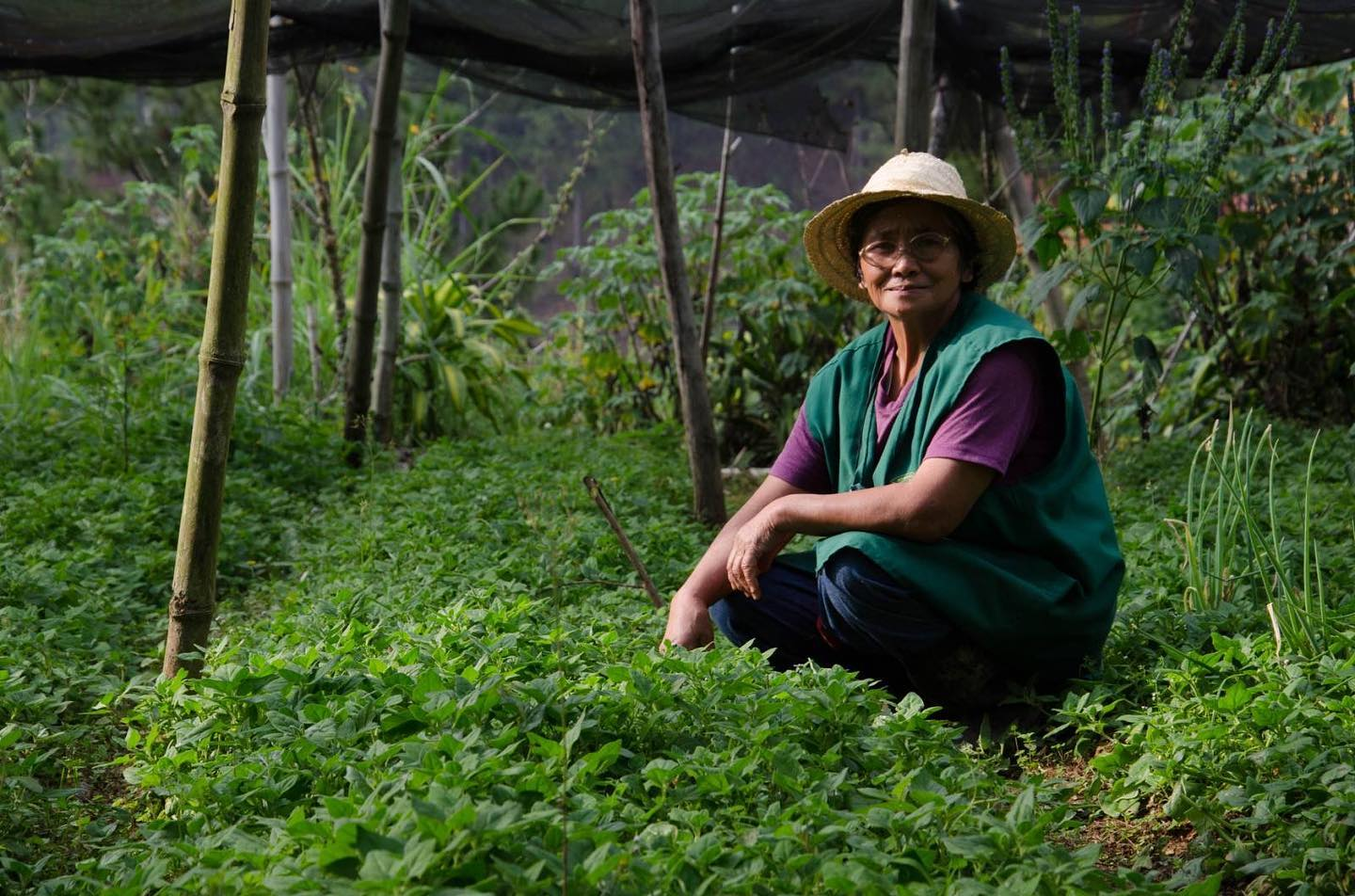 Empowering Filipino farmers through organic agriculture