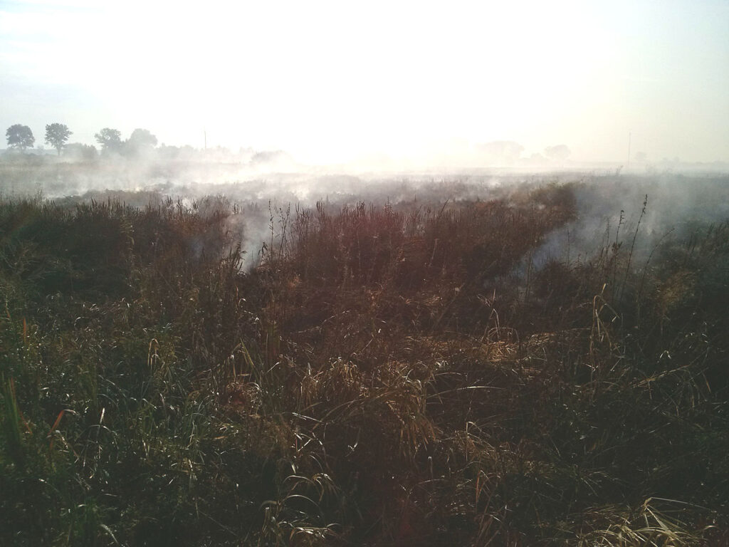 Peat fires in Russia. The image depicts a smouldering peatland.