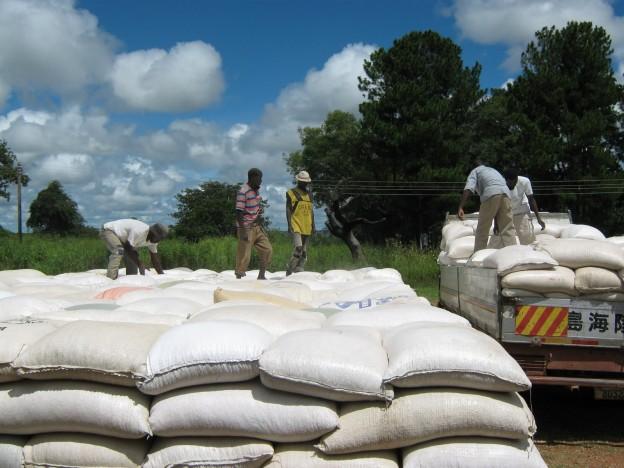 Zambian farmers cry for crop diversification to adapt to climate change