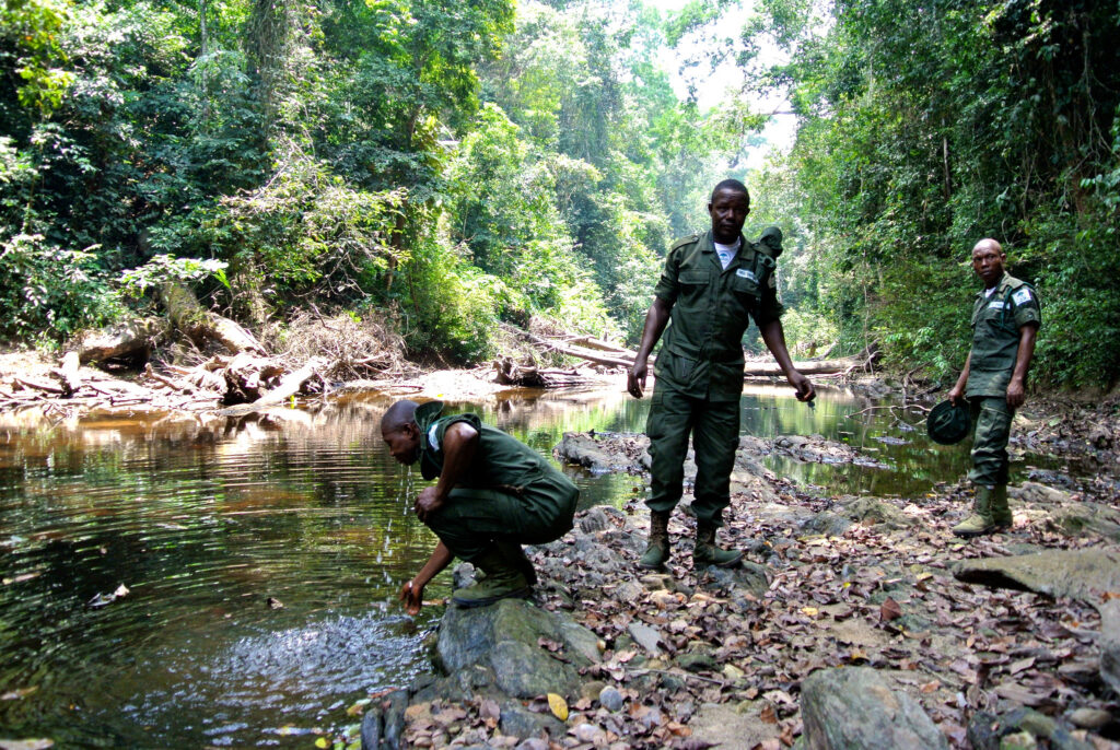 Nigeria forest guards