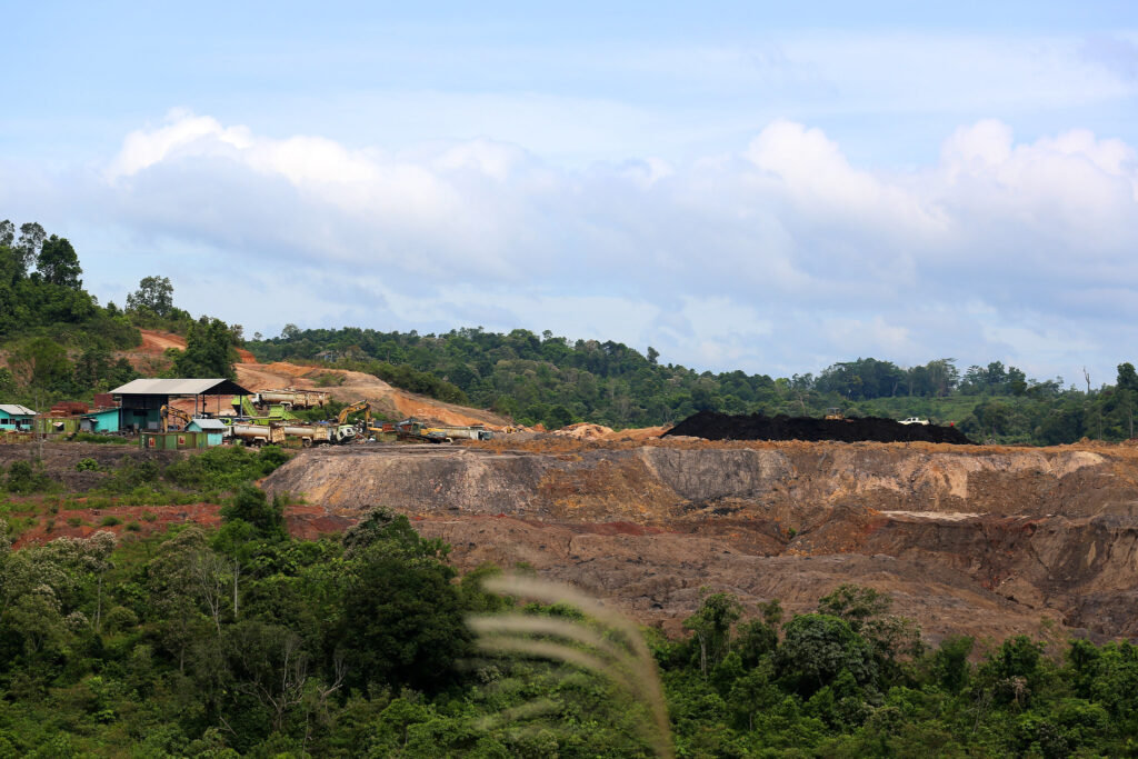 coal indonesia