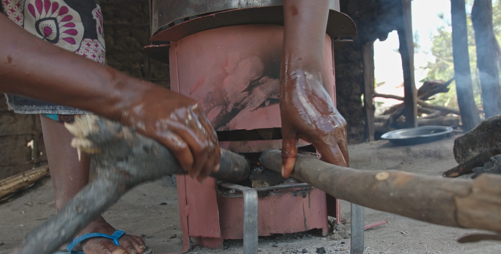 Tanzania's improved stoves could reduce cutting down of trees