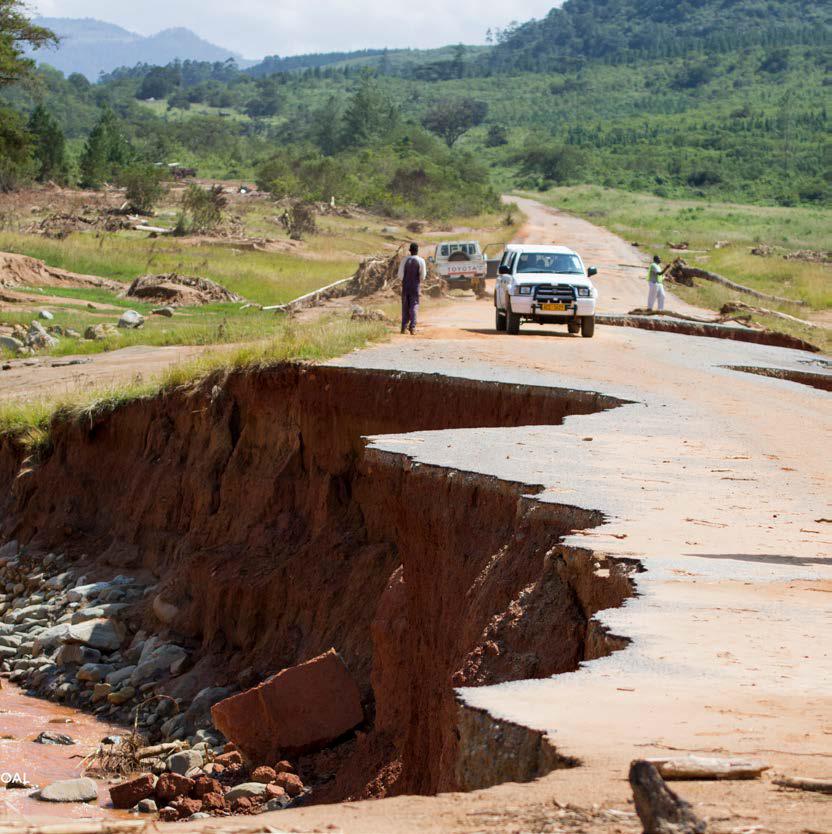 zimbabwe cyclones finance