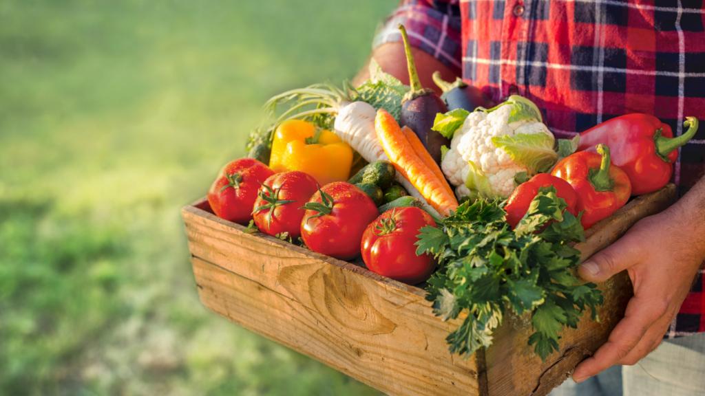 food farming climate