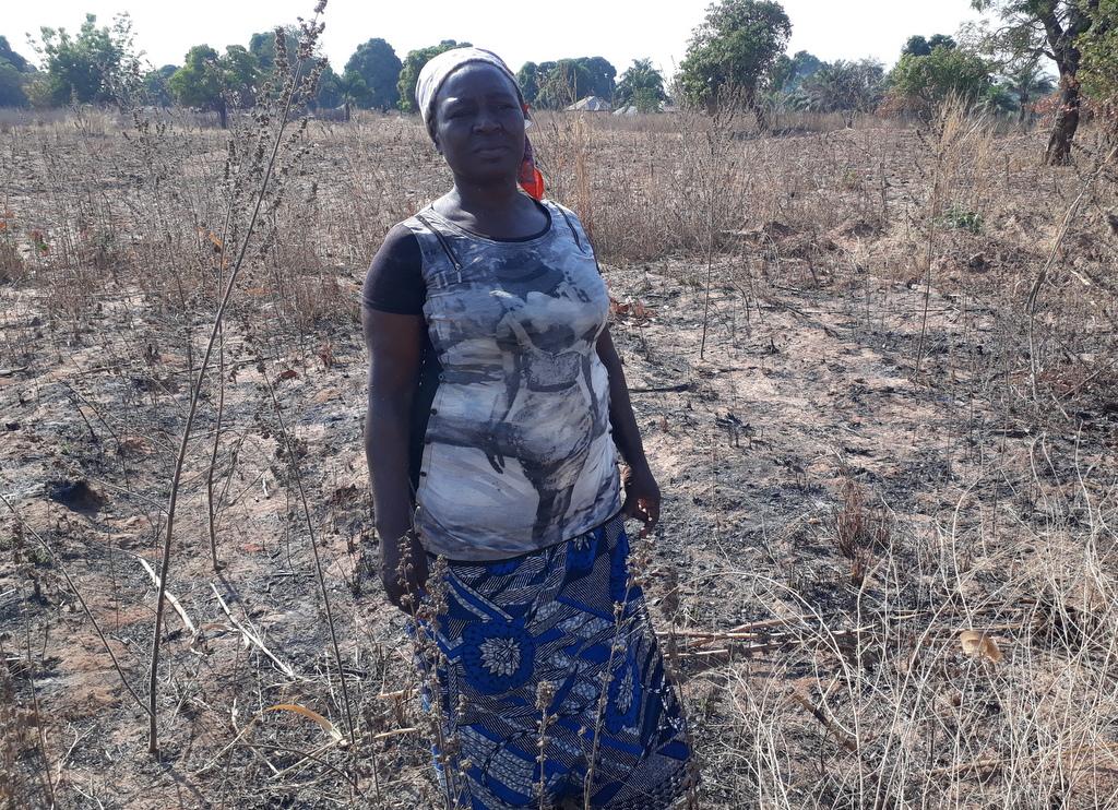 Nigeria Land Drylands Women