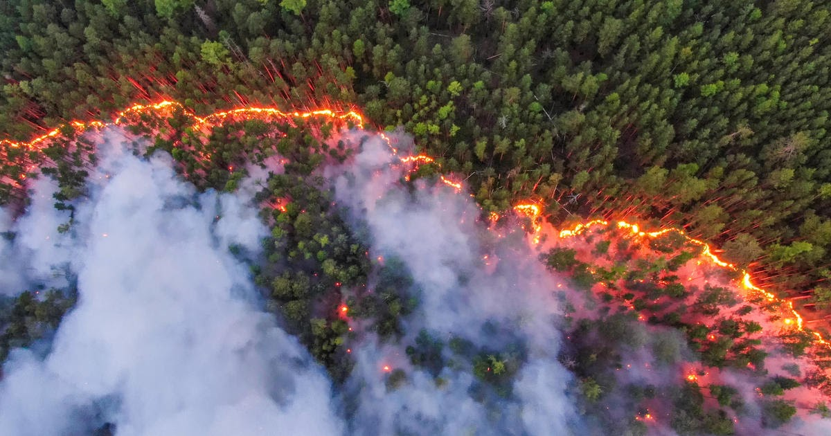 The roof is on fire: Why do we hear about some forest fires more than others?